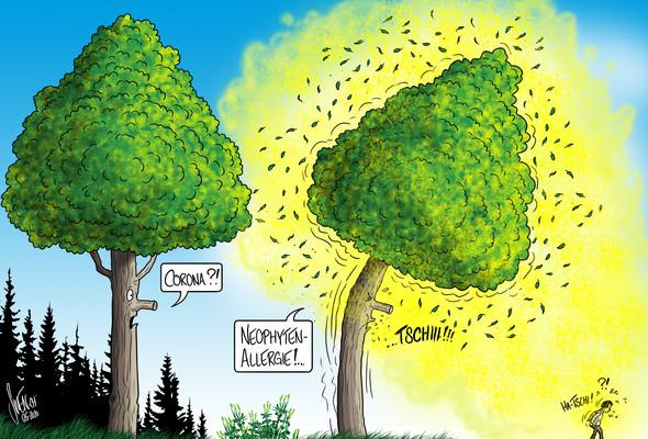 Grüngut im Wald zu deponieren ist nicht nur verboten, sondern fahrlässig.